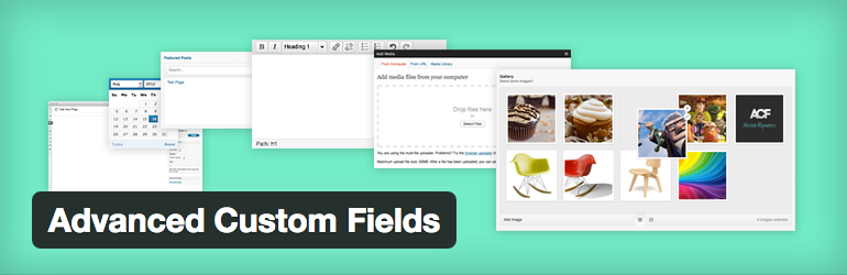 Plugin Advanced Custom Fields