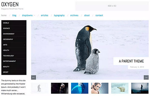 Themes WordPress Travel Free - Oxygen