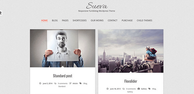 Themes WordPress Travel Free - Sueva