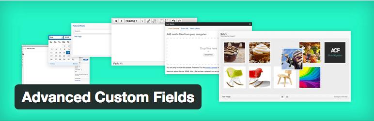 WordPress Advanced Custom Fields