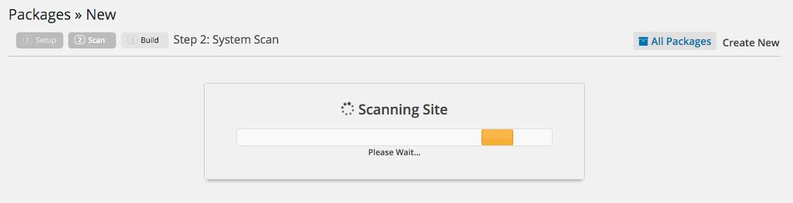 Migrar Site WordPress com Duplicator - Escaneando Arquivos com Duplicator