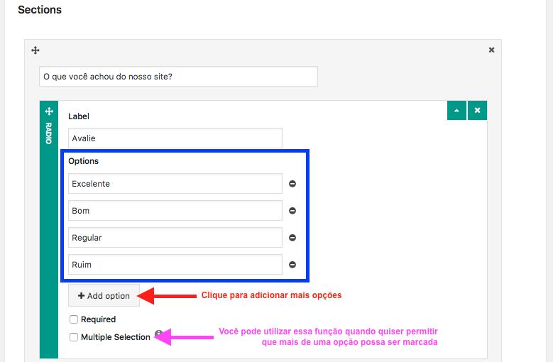 Crie Formulario de Contato Com Passo a Passo no WordPress - Configurando Elemento Radio button ou Checkbox