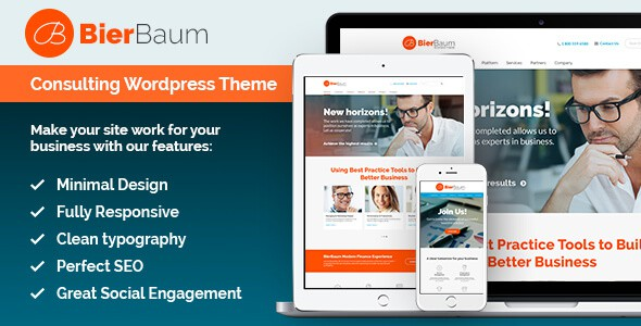 bierbaum-business-consulting-agency-theme