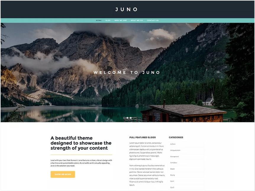 Juno Tema WordPress Blog Pessoal e Estilo de vida