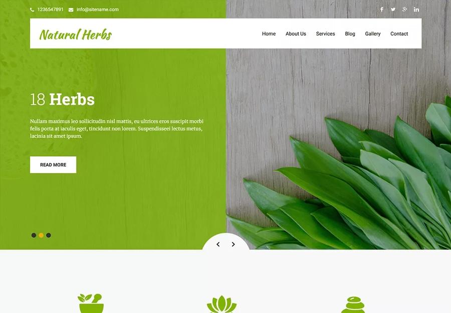 Tema WordPress Ervas Naturais Verdes