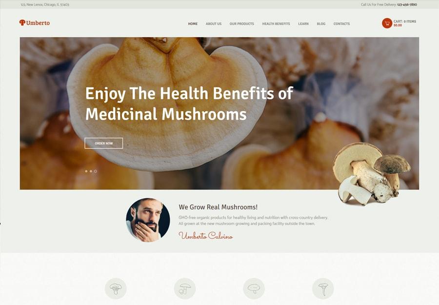 Tema WordPress Fazenda de cogumelo e loja de produtos orgânicos